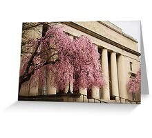 Pink Tree, Classical Columns Greeting Card