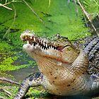 Crocodilian eating by Debellez