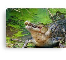 Crocodilian eating Canvas Print