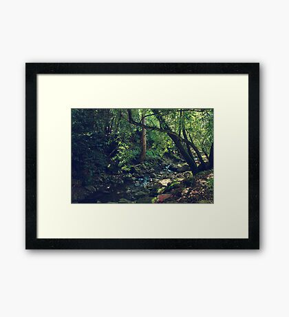 My Love For You Grows Framed Print