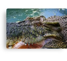 Crocodilian with open mouth Canvas Print