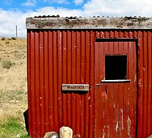 red shed by Anne Scantlebury