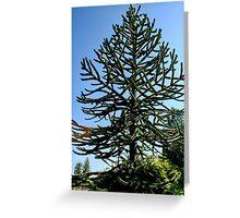 Araucaria araucana (popularly called the Monkey-puzzle Tree or Monkey Tail Tree) Greeting Card