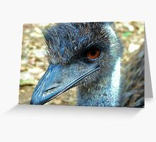 Stare Off. Greeting Card