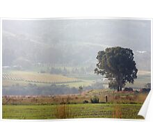Yarra Valley    IMG_9895 Poster