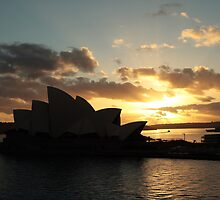 Good Morning Sydney by Cordelia