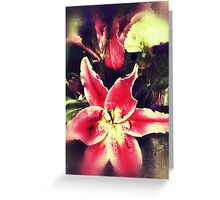 Tiger lily, Digital photography Greeting Card