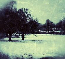 Earlswood in Snow, Digtal photography by Emily King