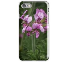 Pale purple Geranium flowers Leith Park Victoria 20151017 0445   iPhone Case/Skin