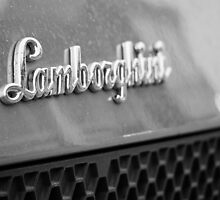 Lamborghini by Brett Rogers