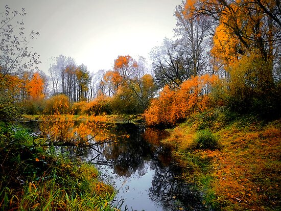 Afternoon At The Pond by Charles & Patricia   Harkins ~ Picture Oregon