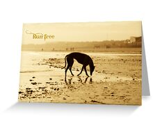 Golden Silhouette - Run Free Greeting Card