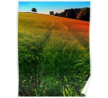 Waving fields of spring Poster