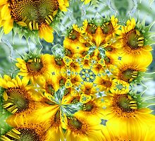 Sunflower Kaleidoscope by Kelly Cavanaugh