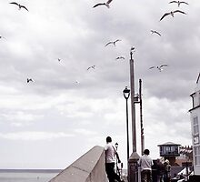 Seagulls riding the updraft - Sheringham by Richard Flint