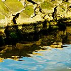 Rocks and Blue Sky Reflections by Carol F. Austin