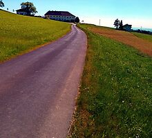 Country road, take me upwards by Patrick Jobst