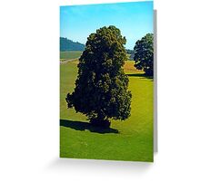 Another boring old tree Greeting Card