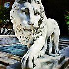 The Lion - U.C. by Alex Baker