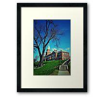 The Tree - U.C. Framed Print