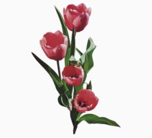 Tulip Family Baby Tee