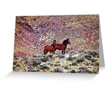 Wild Horse Pair Greeting Card