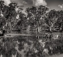 And his Ghost Maybe Heard, (B&W)  Harden NSW, Australia - The HDR Experience               by Philip Johnson