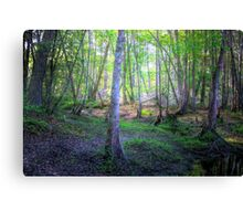 Sipping Trees Canvas Print