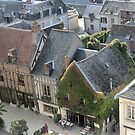 From d'Amboise   Chateau Royal..     A Birds Eye View. by Larry Davis