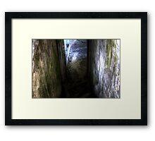 The Walk Down Framed Print