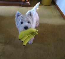 Mr.  Chiquita Banana by MarianBendeth