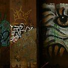 Sydney Graffiti #8 by Nenad  Njegovan