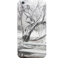 Park During Heavy Snowfall In Winter In Bucharest, Romania iPhone Case/Skin