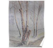 Narrabri Tree Scene Poster