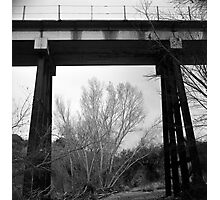 Bridge Frame Photographic Print