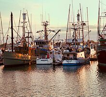 Commercial Fishing Boats Docked in San Diego Harbor by Jerry Philpot