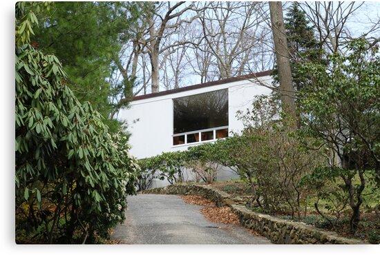 Mid Century Modern - Beaven Mills House by Jane McDougall