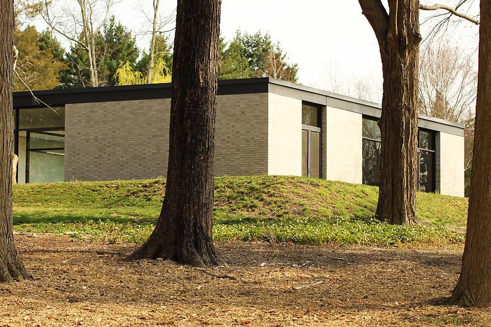 Mid Century Modern - Hodgson House by Jane McDougall