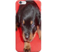 "And they call it ""Puppy Love"" ..... iPhone Case/Skin"