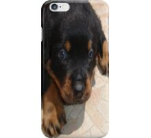 Rottweiler Puppy Face iPhone Case/Skin