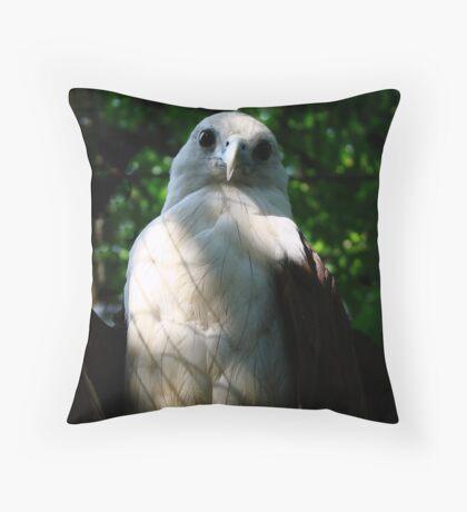 Philippine Eagle Throw Pillow