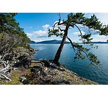 St. john Point Hill Photographic Print