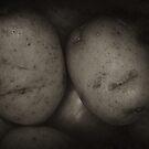 POIGNANT POTS by scarletjames