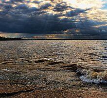 Breaking Waves by Carolyn  Fletcher