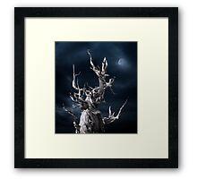 The ghost of Pinus longaeva. Framed Print