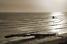 Saltwick Bay by Svetlana Sewell