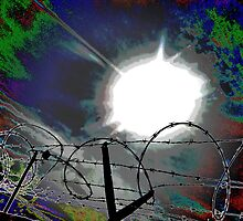 """""""Barbed Wire"""" by Gail Jones"""
