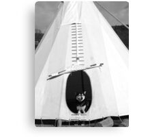 A Wolf in the Wigwam Canvas Print