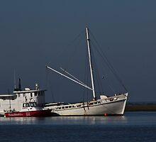 Tow Boat by Brenda  Meeks
