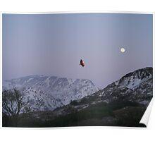 Wrong Moon Wrong Mountains Poster